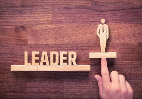 Wie Führungskräfte nachhaltige Führungskompetenzen erwerben und in der Praxis erfolgreich und kompetent tätig sind